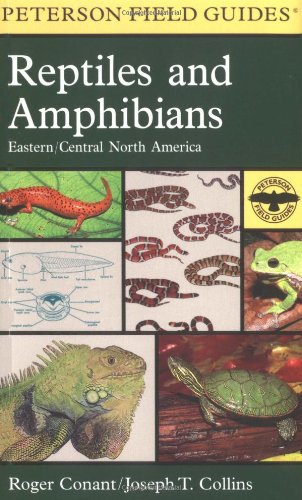 peterson field guide to birds of eastern north america