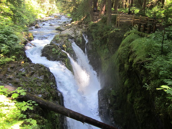 sol duc river fishing guides