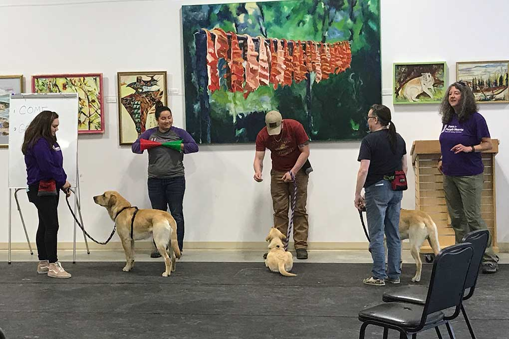 become a guide dog trainer